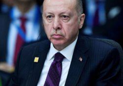 Опрос: Каждый четвертый турок не доверяет Эрдогану