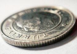 Турецкая лира опустилась до минимума, зафиксированного за последние 27 лет