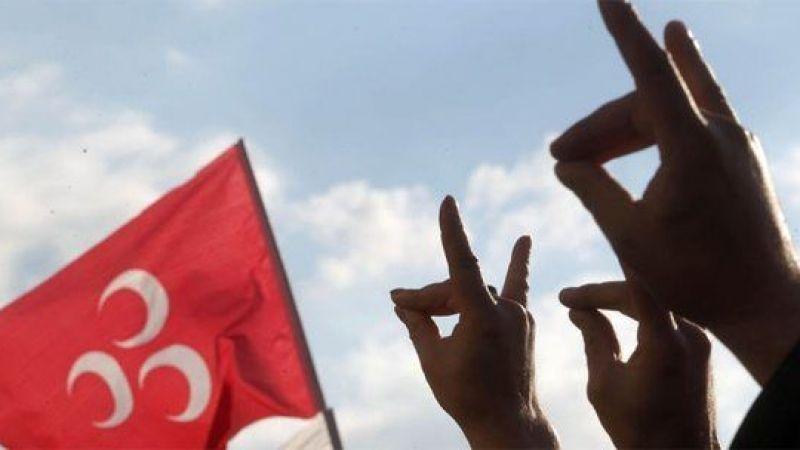 Нидерланды потребовали запретить турецких «Серых волков»