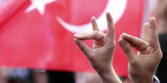 Во Франции официально запретили деятельность турецкой ультранационалистической организации, связанной с партией Эрдогана