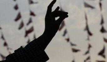 Франция запретит деятельность организации турецких националистов