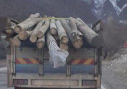 Чиновник ПСР пойман с поличным при незаконной продаже столбов электричества
