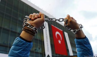 Freedom House: Турция увеличила преследование противников власти за пределами страны