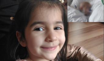 Маленькая Кубра умерла, так и не увидев отца