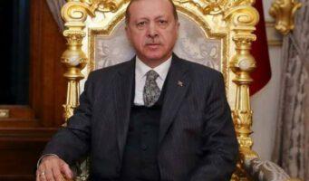 Спецслужбы Нидерландов нашли связь между Эрдоганом и ростом салафитов в стране: Нацелен стать мировым лидером мусульман-суннитов