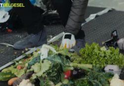 Пользователи возмущены телепередачей о еде из мусора