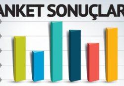 Что говорят последние опросы? Турки все меньше довольны экономической политикой правительства и Эрдоганом