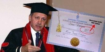 Новые подробности вокруг «диплома» Эрдогана