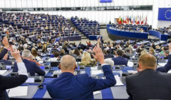 Европейский парламент: «Серые волки» должны быть внесены в «список террористических организаций»