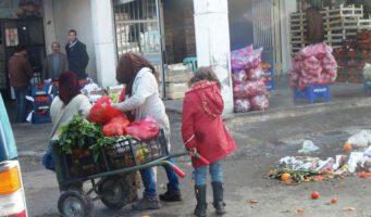 Турки собирают овощи и фрукты, выброшенные в мусор