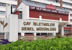 Убытки ÇAYKUR за 18 лет правления ПСР выросли больше 1200 процентов