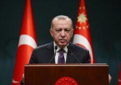 Проправительственные СМИ вырезали из заявления Эрдогана слова о платных вакцинах в Европе