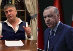 Разоблачения Пекера негативно сказываются на рейтингах Эрдогана