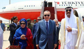 Президентский дворец имеет 13 самолетов, а чтобы тушить пожары в Турции нет ни одного подходящего