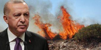 The Economist: Репутация Эрдогана превратилась в пепел