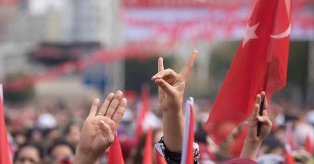 В США требуют внести в террористический список турецких ультраправых националистов