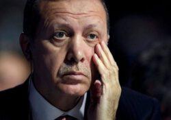 Опрос Metropoll: Доверие к Эрдогану ослабело