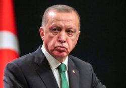 Высказывания президента Эрдогана признали «оскорблением главы государства»